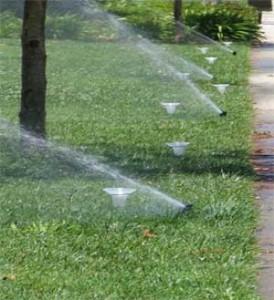 Bainbridge Island Irrigation